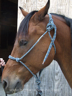 how to use a rope halter